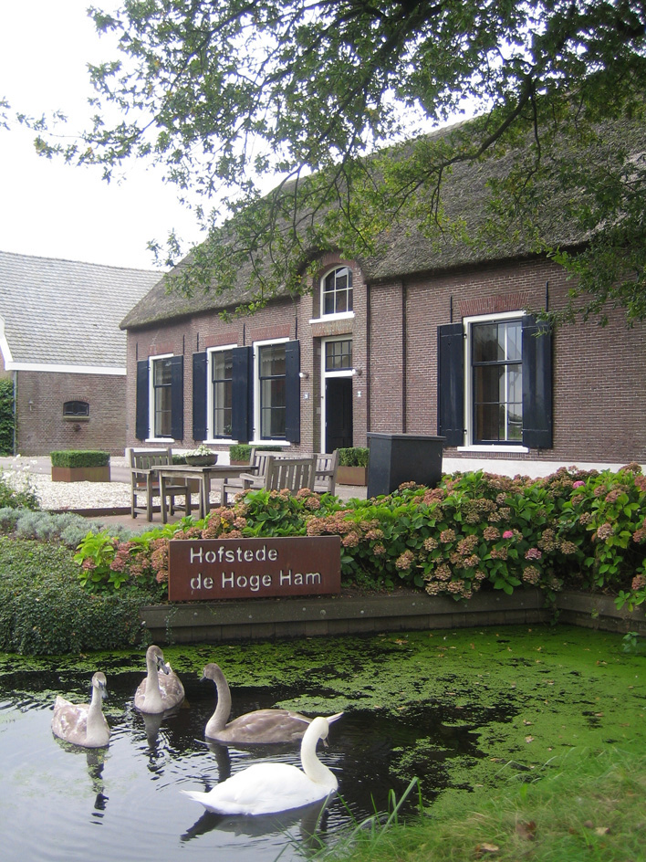 De Hoge Ham is een monumentale boerderij aan de Parkweg 26 in Vleuten. De hoeve dateert oorspronkelijk uit omstreeks 1550 en werd drie eeuwen later verbouwd. In 2000 werd de deels gerietdekte hofstede gerestaureerd en kreeg daarbij een woonbestemming. Veel authentieke details zijn behouden gebleven in de boerderijgebouwen en de omgeving.