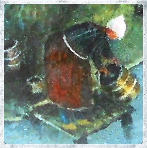 Boerin die tonnen uitspoelt in de Hollandse IJssel. Detail uit een 18e eeuws schilderij in de schouw van de voormalige hofstede aan Noord IJsseldijk 41 te IJsselstein (3).